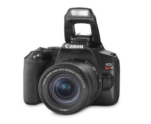 how to use DSLR camera for beginners, best camera for professional photography, Nikon d3500 DSLR,