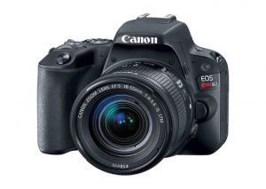 Best Camera Under $1,000, best entry-level DSLR 2018, how to use DSLR camera for beginners, best camera for professional photography,
